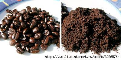 Кофейная гуща-полезность.  Прочитать целикомВ.