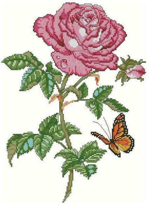 Мои любимые розы.схемы-2. ещё схемы.