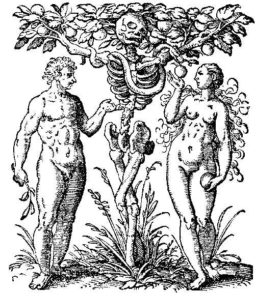 drevo-indiyskie-seks-illyustratsiya
