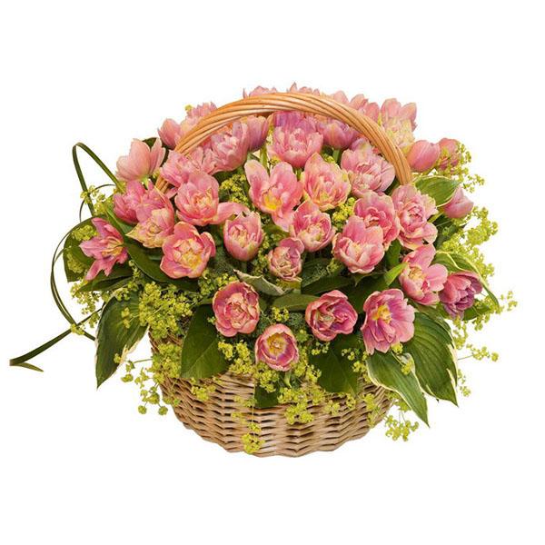 Следующий букет.  Состав.  99 тюльпанов,зелень,оазис,корзина.