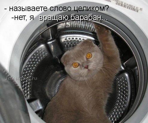 http://img1.liveinternet.ru/images/attach/c/1/57/825/57825230_.