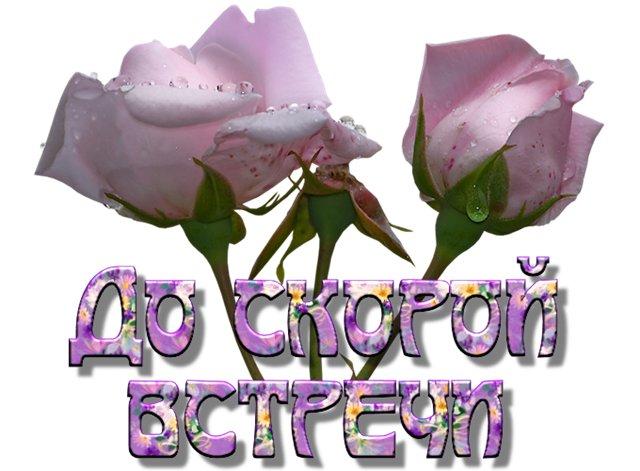 http://img1.liveinternet.ru/images/attach/c/1/58/153/58153727_do_skoroy_vstrechi.jpg