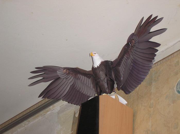 Как сделать орла из рук 106