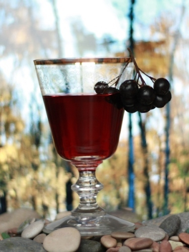 Летом и осенью, когда есть ягоды, можно приготовить чудесные напитки.  Наливка из черноплодной рябины...