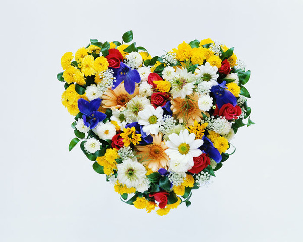 60272886_flowers103.jpg