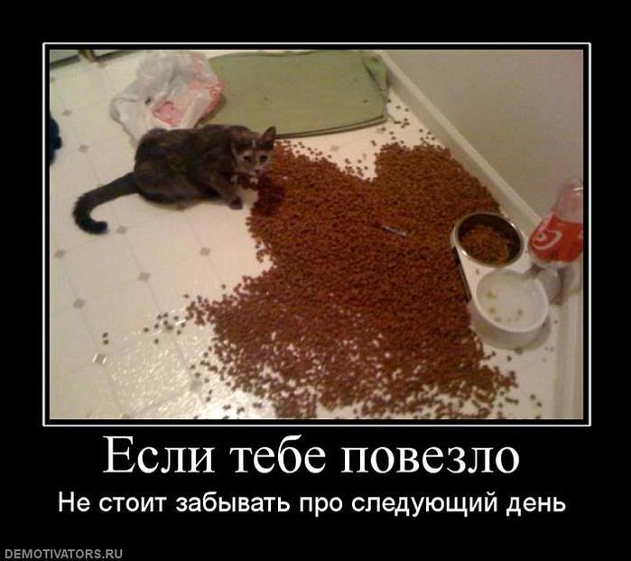 http://img1.liveinternet.ru/images/attach/c/1/60/771/60771858_631500_eslitebepovezlo.jpg