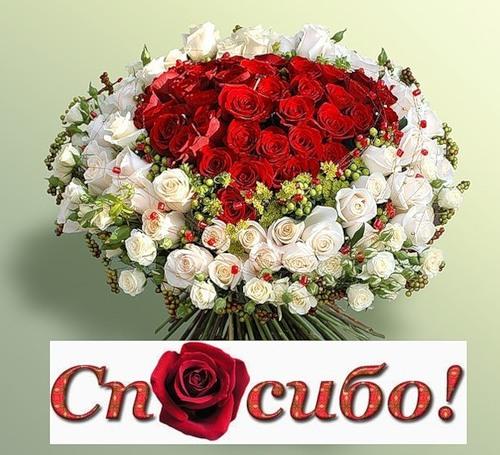 http://img1.liveinternet.ru/images/attach/c/1/60/931/60931084_0_3bd13_ffd85c3b_L.jpg