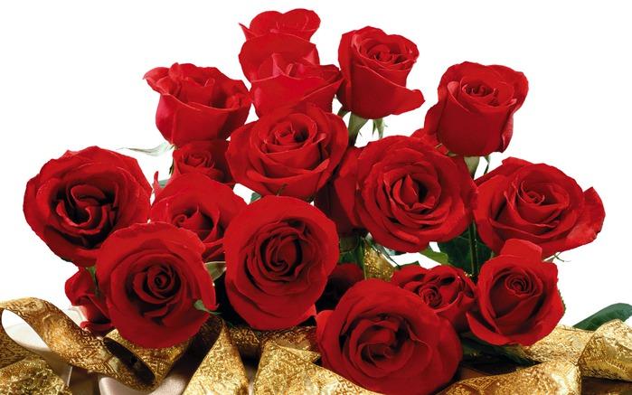 обои на рабочий стол самые красивые розы для тебя № 164833 без смс