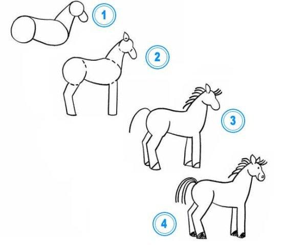 Схема рисования домашних животных (козла, коровы, свиньи, барана, лошади, собаки.