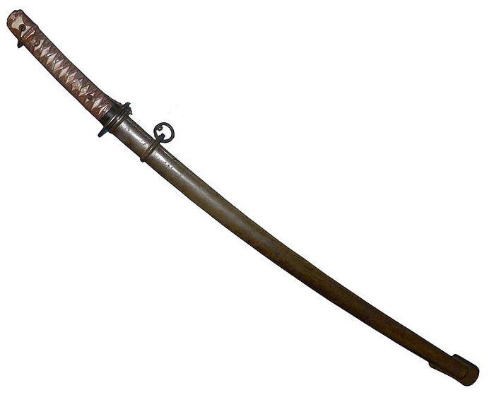 Катáна (яп. 刀?) - длинный японский меч (дайто:).  В современном японском слово катана также обозначает любой меч.