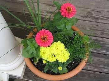 цветы идеревья из бисера.