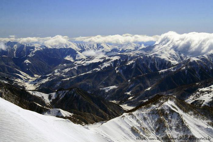 ghn грузия:
