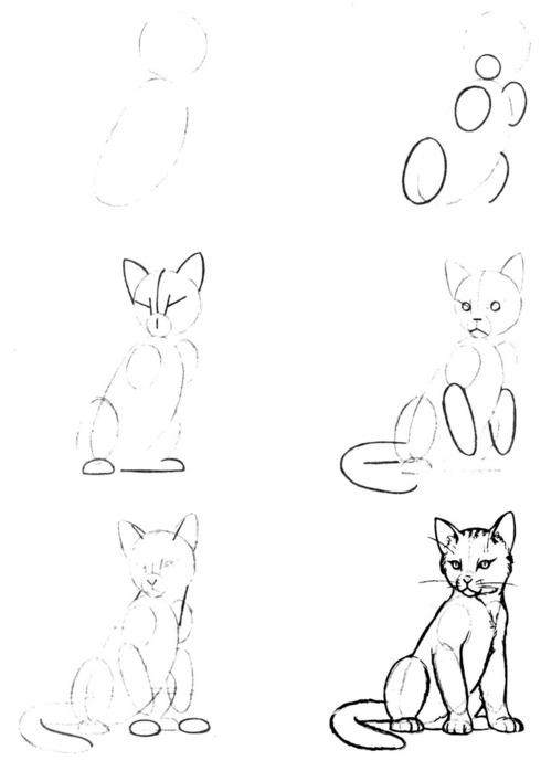 Уроки рисования карандашом для начинающих - как научиться рисовать