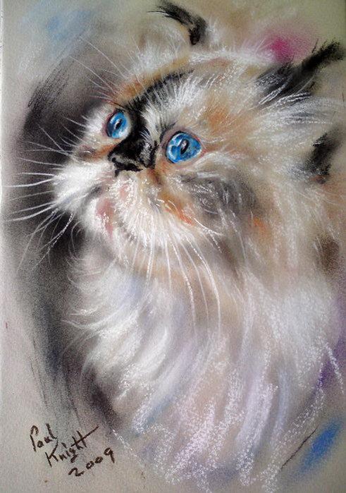 2795685_51030238_Persian_Blue_by_astarvinartist (491x700, 113Kb)