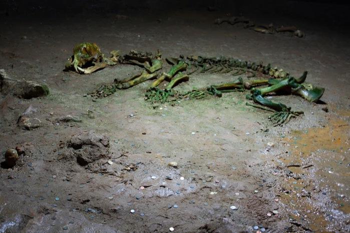 Медведь Пещера в селе Chiscau - Румыния - Bears' Cave, Chiscau, Romania, 60780