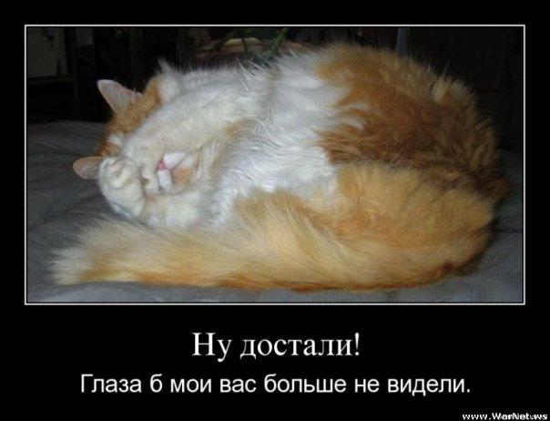 http://img1.liveinternet.ru/images/attach/c/1/73/979/73979467_4059800_Ya53.jpg