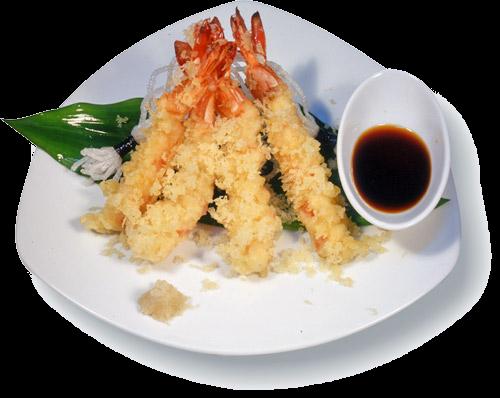 tempura_sch_b (500x398, 290Kb)