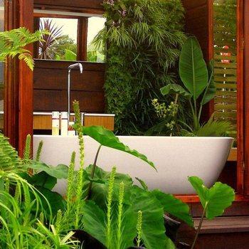 дизайн интерьера ванной,дизайн туалетной комнаты,как украсить ванную,цветы для ванной,ванна цветов,дизайн туалета и ванной комнаты,как украсить ванную комнату,любимые комнатные растения