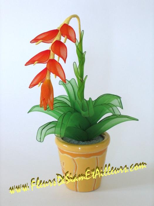 fleur_11 (525x700, 83Kb)