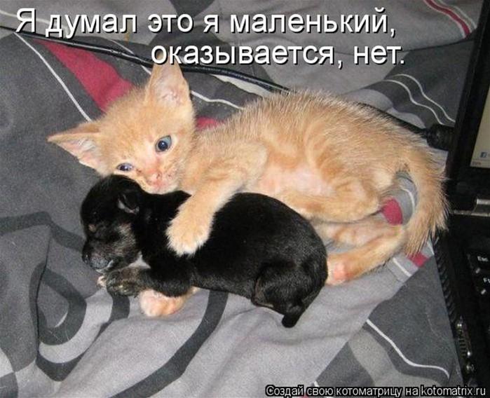 image9339138 (700x568, 105Kb)