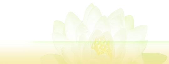 bot_flower (540x206, 6Kb)