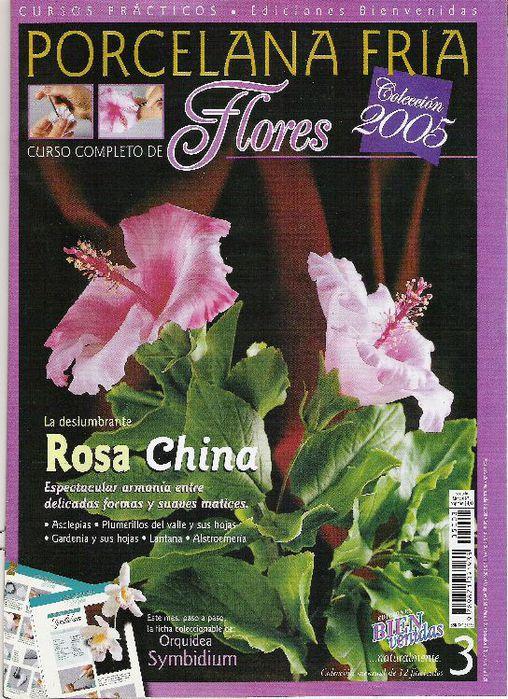 rosa_china_2005_1 (508x700, 119Kb)