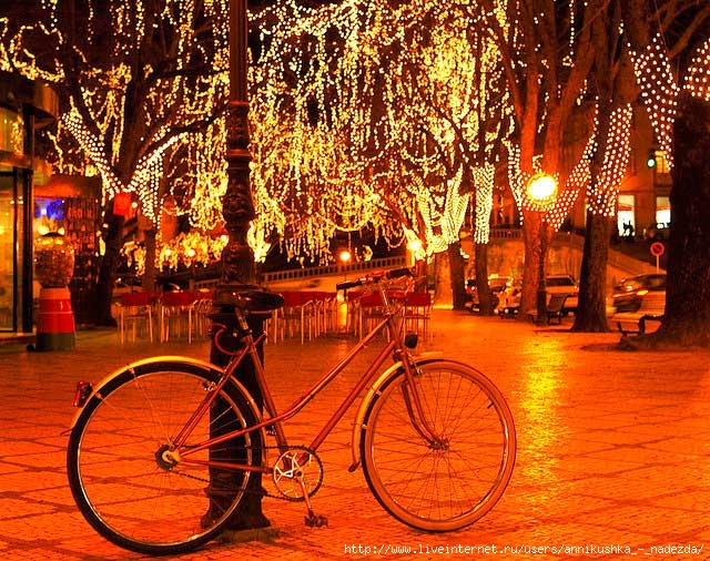 bicycle-viseu-portugal-christmas-lights (640x506, 361Kb)