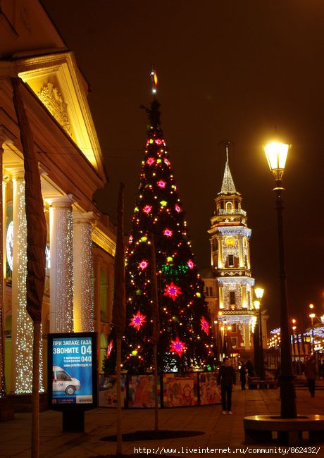 Новый год. Петербург./1413032_IMGP0037 (460x650, 171Kb)