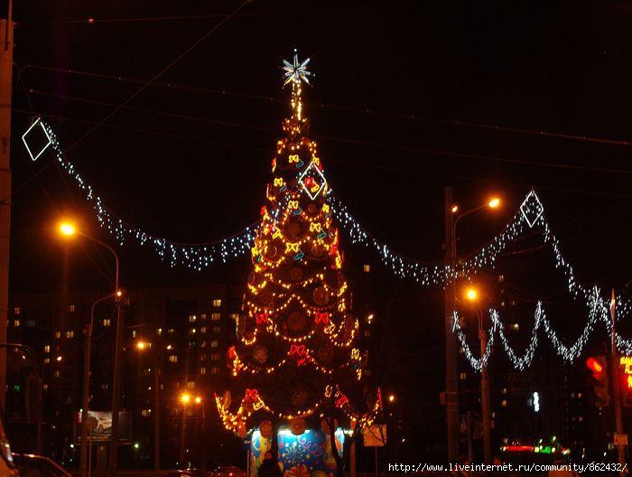 Новый год. Петербург./1413032_IMGP0129 (700x528, 164Kb)