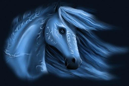 Что принесет нам год Лошади!?