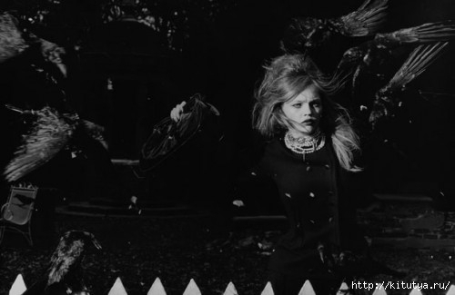 birds-peter-lindbergh-5-500x325 (500x325, 60Kb)
