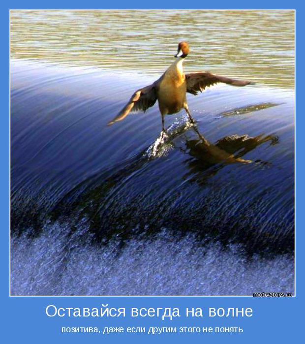 1388771393_pozitivnoe_muyshlenie (620x700, 69Kb)