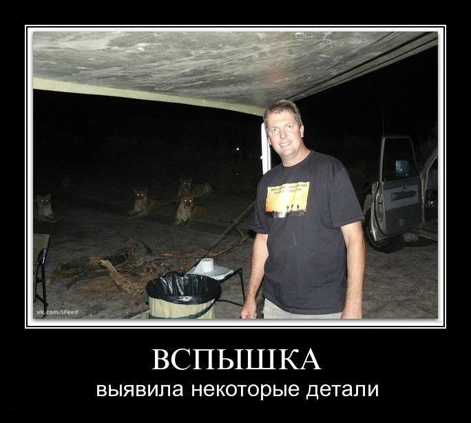5395830_demotivators_animal_003_1_ (684x614, 85Kb)