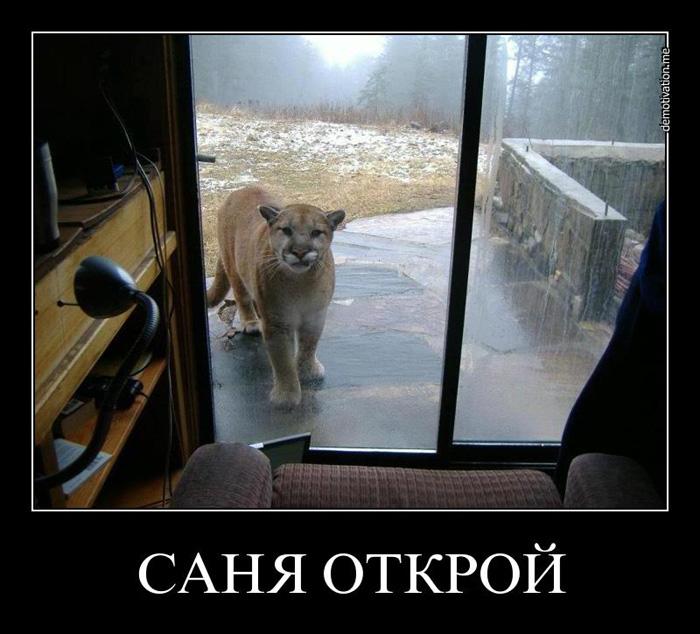 5395830_demotivators_animal_006 (700x634, 140Kb)