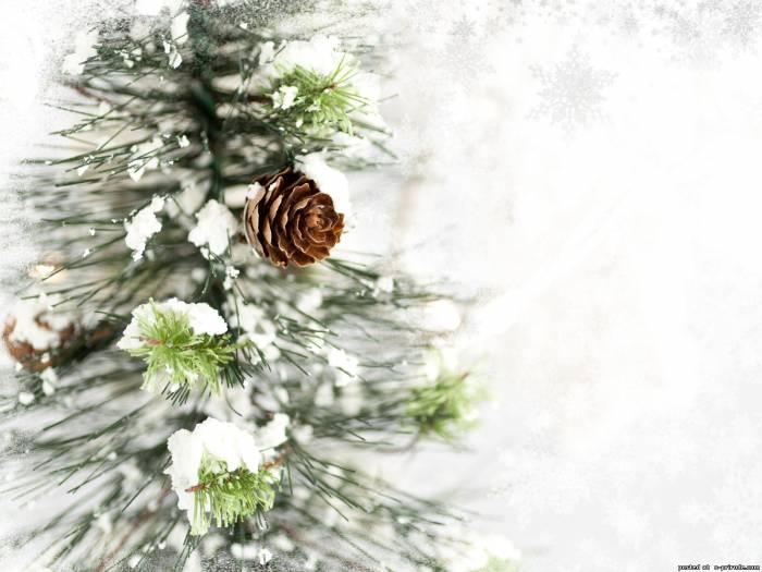 зимняя картина 7 (700x525, 204Kb)