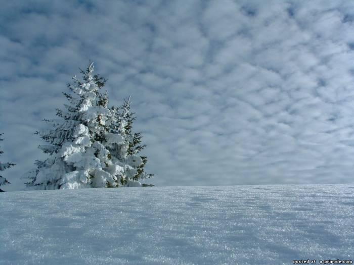 зимняя картина 9 (700x525, 170Kb)