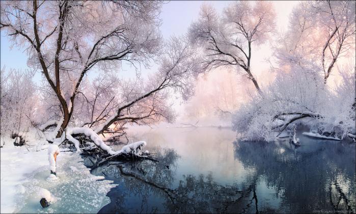 Рождественские кружева 2011 год. Фото Влад Соколовский (700x420, 180Kb)