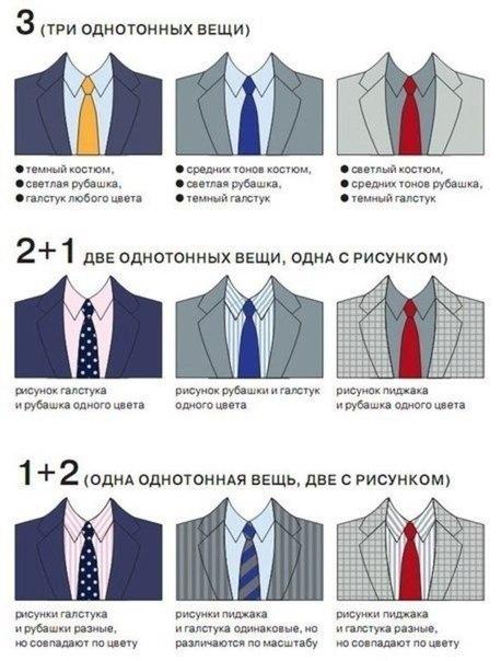 галстук и костюм сочетание (458x604, 179Kb)