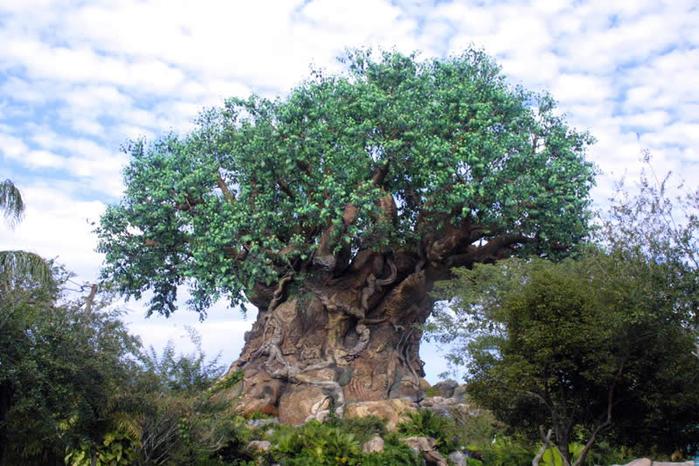 дерево жизни 3 (700x466, 440Kb)