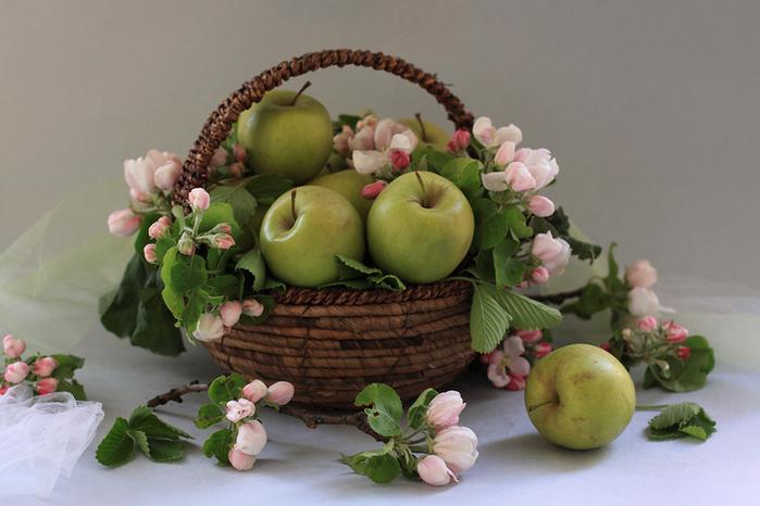 цветы и фрукты 12 (700x466, 453Kb)