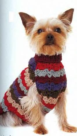 <одежда для собак крючком