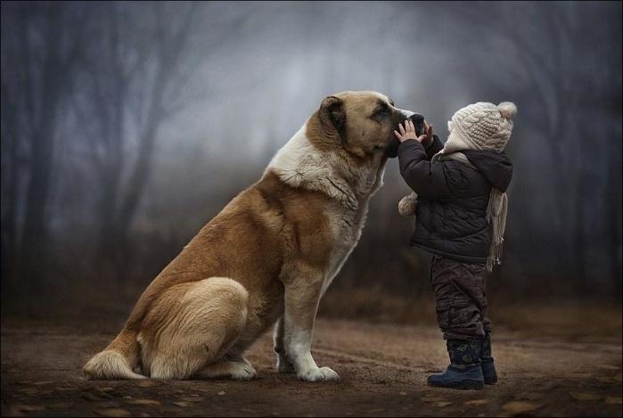 1389896533_boy-w-animals-011 (700x469, 180Kb)