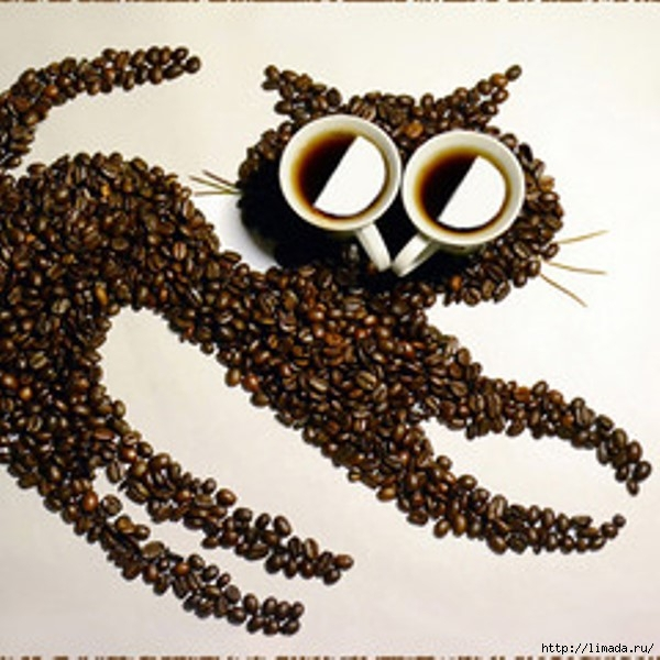 240xdsc_0015-coffee-cat (600x600, 198Kb)
