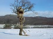 driftwood-egg-treehouse-lg-180x133 (180x133, 8Kb)