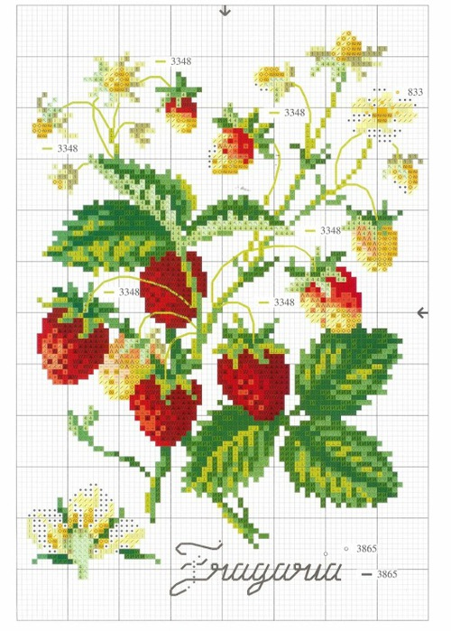 Вышивка ягод крестиком схемы
