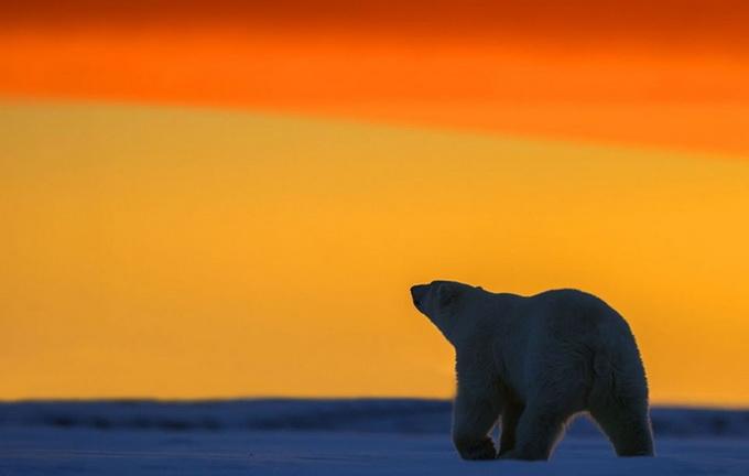 солнечный закат фото 1 (680x432, 95Kb)
