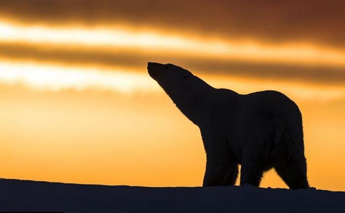 солнечный закат фото 3 (680x420, 111Kb)