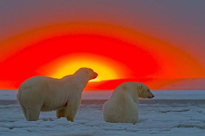 солнечный закат фото 9 (680x453, 125Kb)