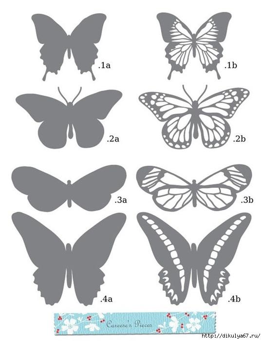 Трафарет бабочки своими руками из бумаги