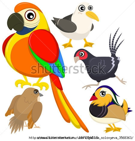 stock-vector-five-colorful-cute-birds-with-white-background-157294613 (450x470, 114Kb)